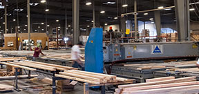 Burton Lumber General-Employment Application